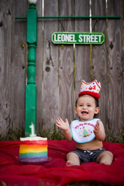 Leo's 1st Birthday