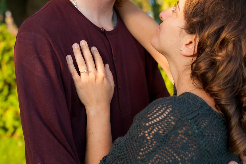 Karen and Andrew - Engagement-113.jpg