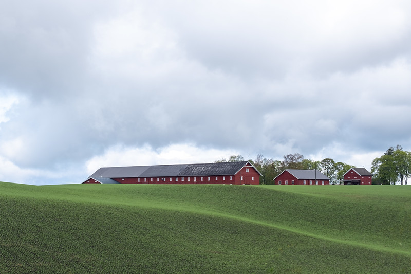 Nøsle gård