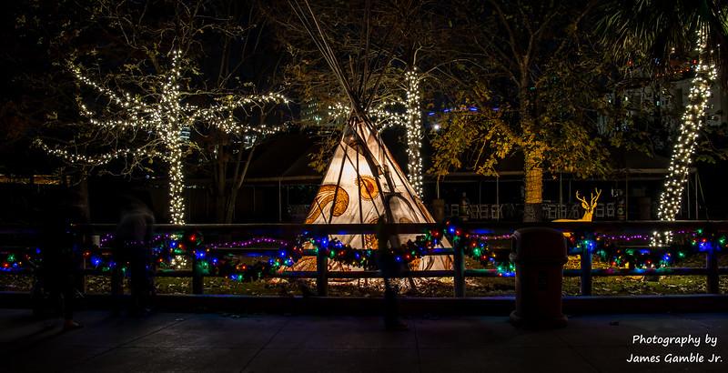 Houston-Zoo-Lights-3019.jpg