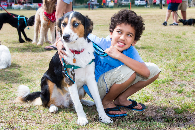 Woofstock_carrollwood_tampa_2018_stephaniellen_photography_MG_8416.jpg