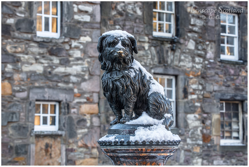 Greyfriars Bobby statue in the snow