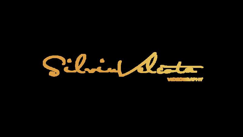 SilviuVelcota Logo writing.png