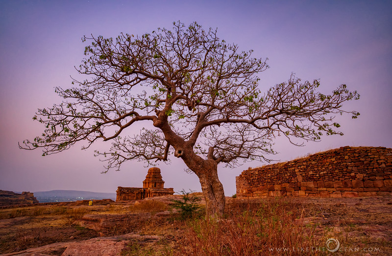Signs of Spring @ Badami