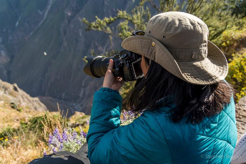 Colca Canyon-1238.jpg