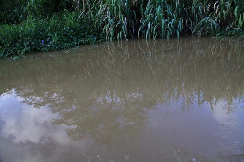 Rzeka Kinabatangan