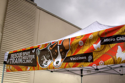 The Rescue Train Spay & Neuter Clinic - Echo Park