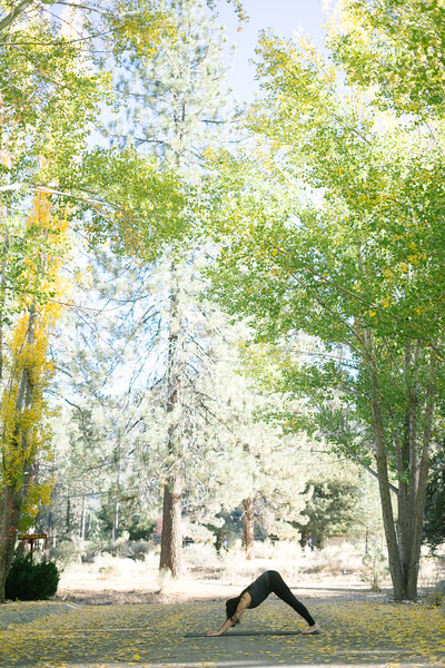 Toni Kuhn Yoga Photography Pine Mountain Club-47.jpg
