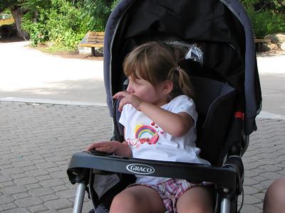 The Zoo 2009