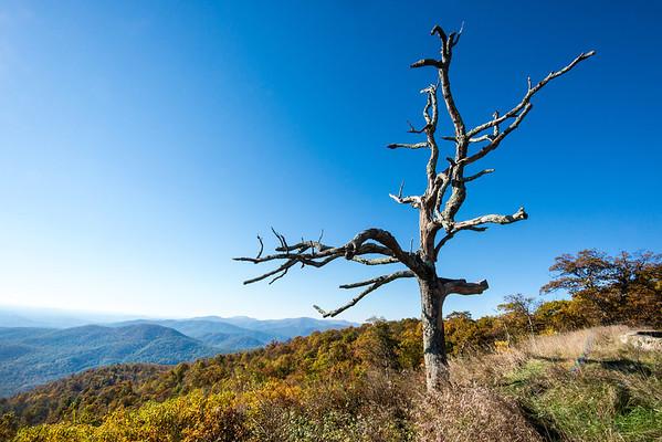 Shenandoah National Park 2013