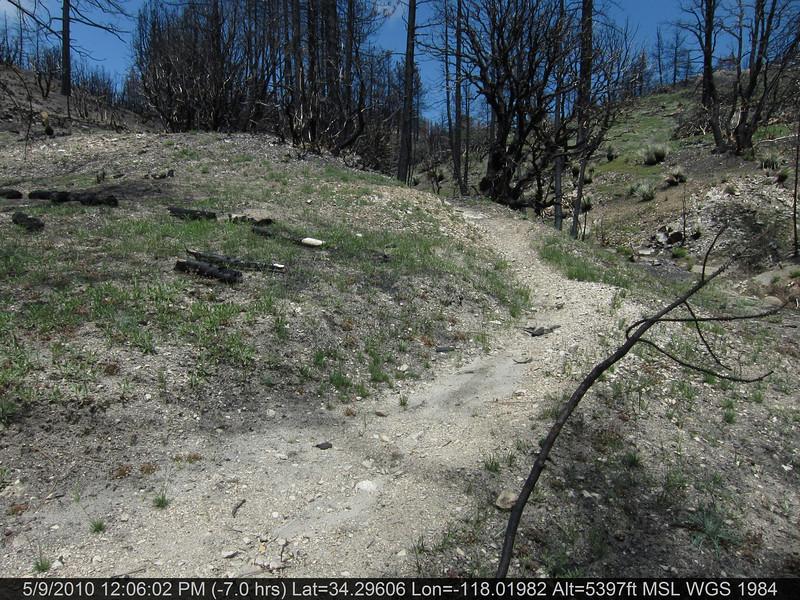 086-Vetter mtn Trail.JPG