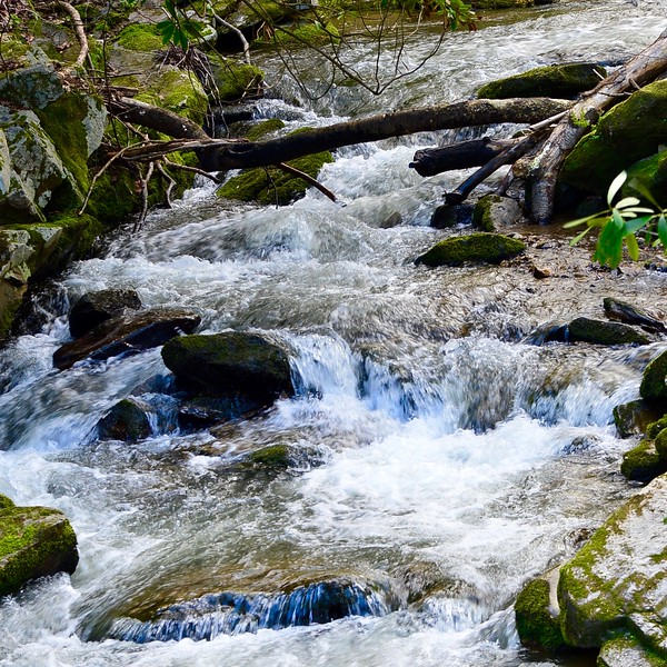 Scenic Stream in Mountains of Tennessee.jpg