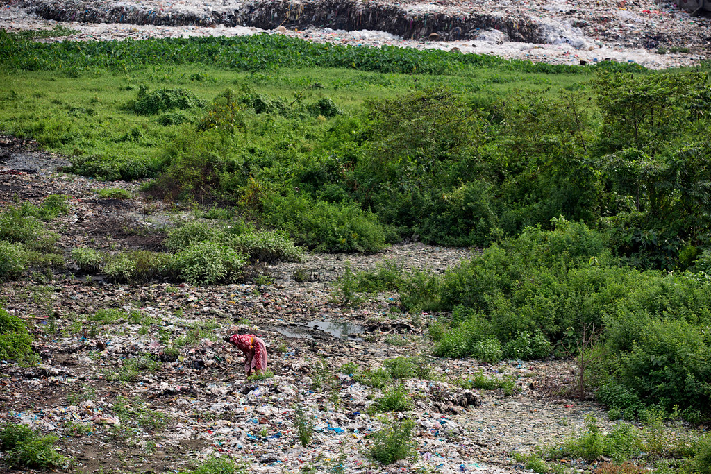 . A Bangladeshi  rag picker collects plastic recyclable material by the river Buriganga on the eve of World Environment Day in Dhaka, Bangladesh, Monday, June 4, 2018. (AP Photo/A.M. Ahad)