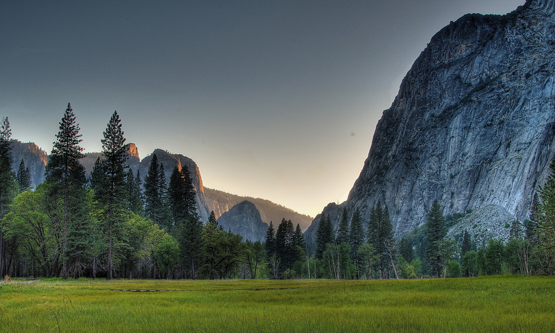 Verdant Yosemite Valley