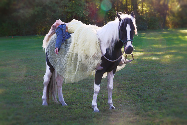 Beauty And Her Steed
