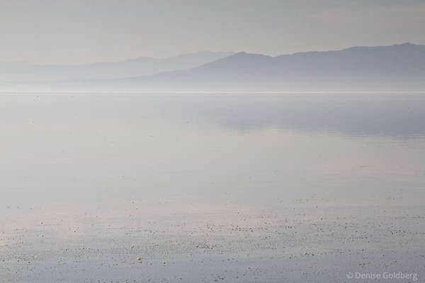 Salton Sea, reflections, mist