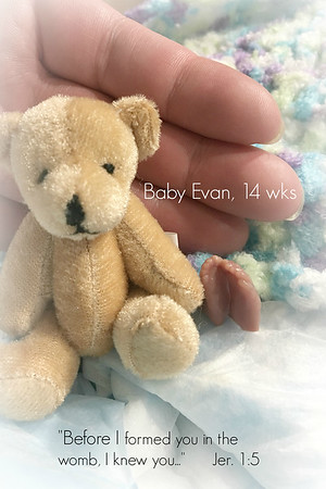 Baby Evan 2019