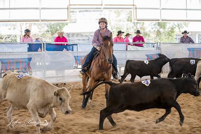 ABCRA Nationals Ranch Sorting - #4