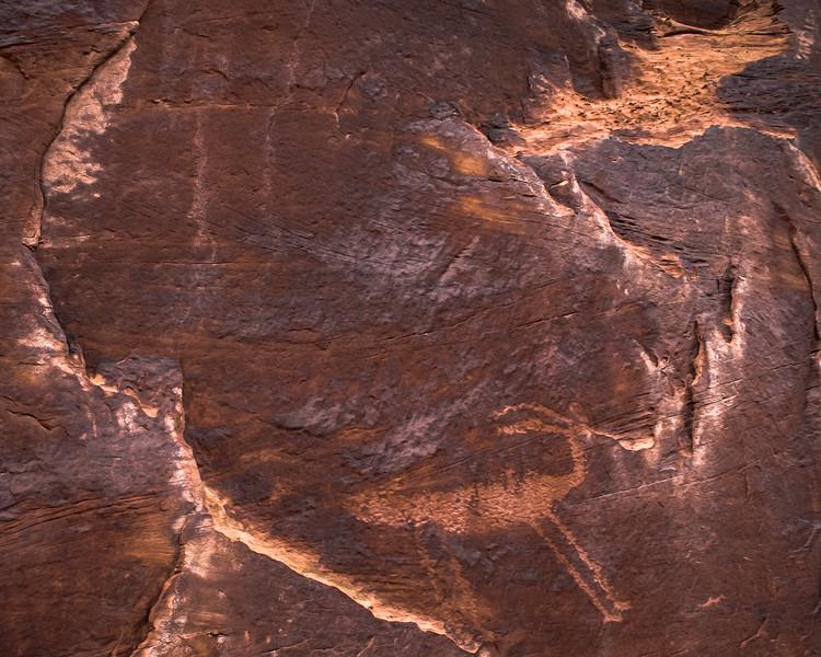 Sheep Petroglyph