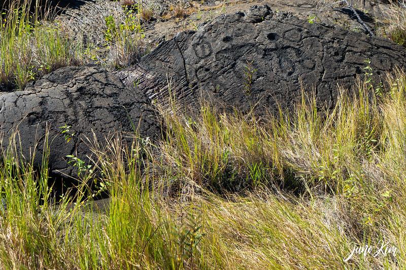 Pu'u Loa Petroglyph - human images