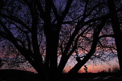 2012-04 - Landscape at Sunset