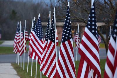 11/11/2014 Daisy Brrok Veterans Day Program