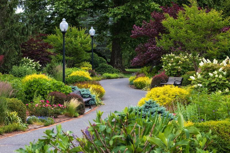 Bayard Cutting Arboretum path
