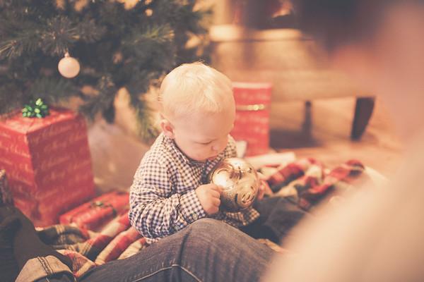 Mason's Christmas mini