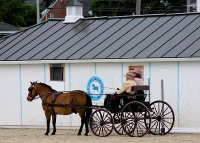 2017 Devon Horse Show
