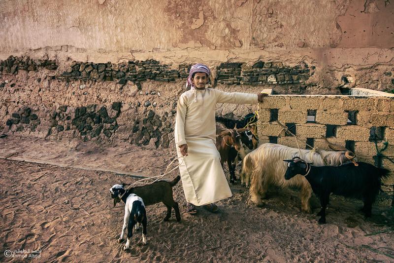 FE2A0412-1 (1)- Oman.jpg