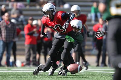 2015 Bantam Bulldogs vs Falcons (Sep 27)