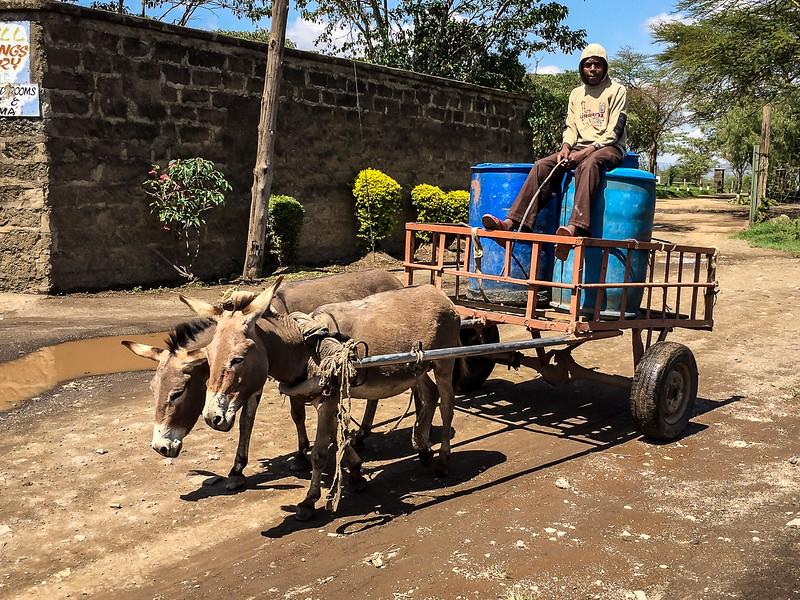 Kenya-0254.jpg