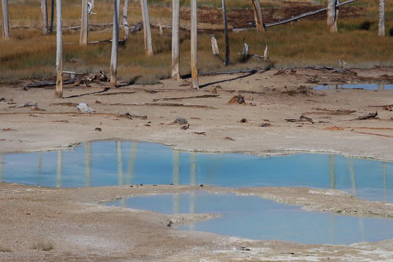 Yellowstone 055.JPG