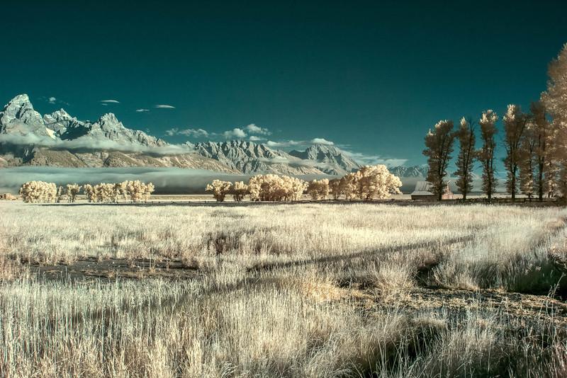 Jackson Hole & Yellowstone 2016