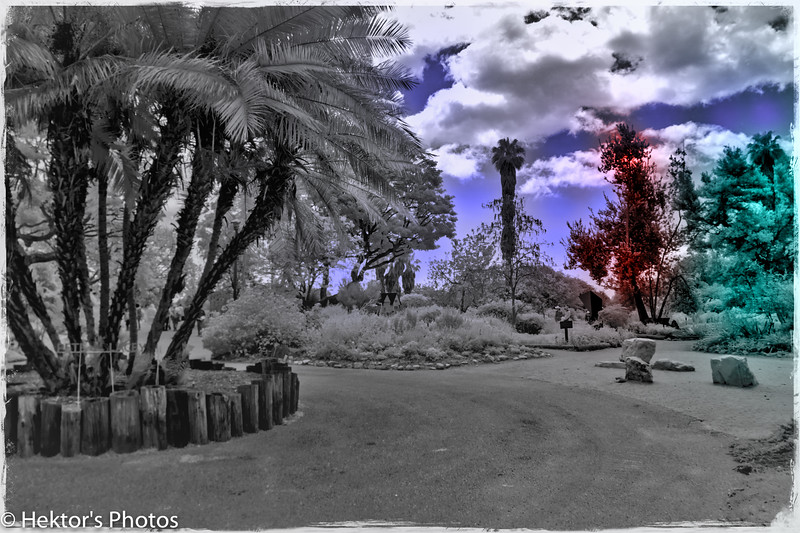 SCBG-0522-3.jpg
