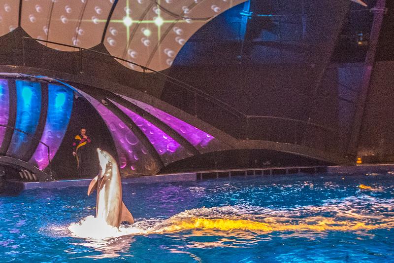 GA Aquarium with Linc, Ali & Abe-106.jpg