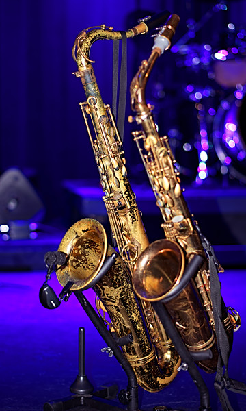 Chicago Sax, Bonita Springs, FL