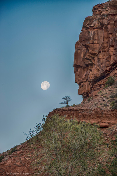 Moonset at Zion