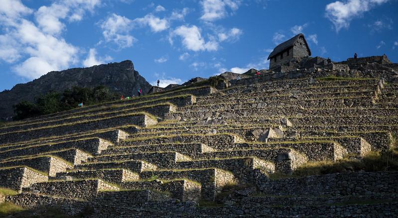 Machu Picchu_MG_3156.jpg