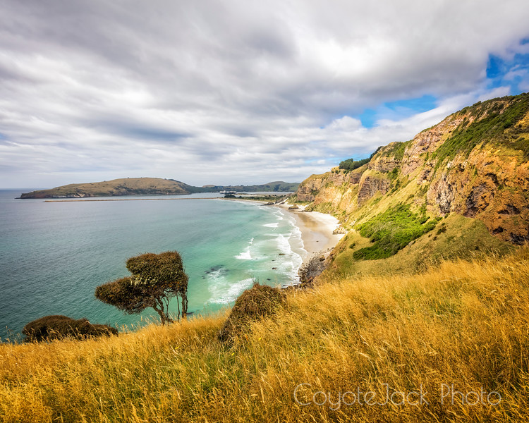 Aramoana Cliffs