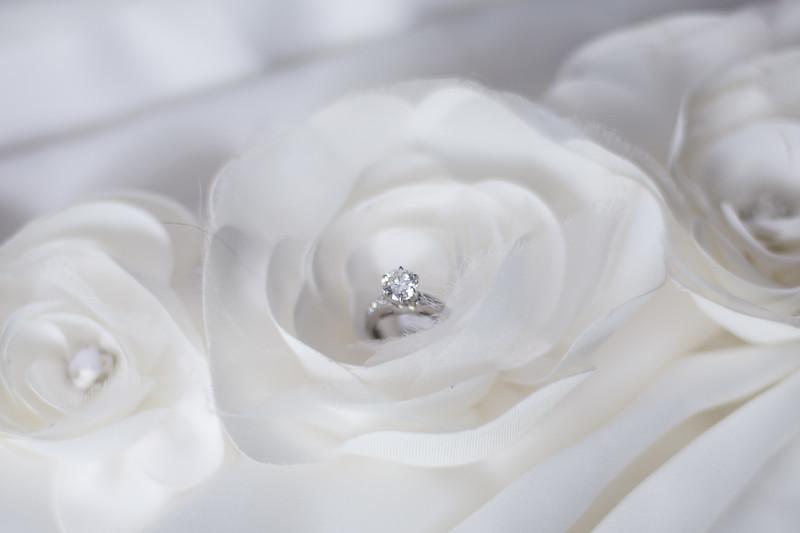 bap_schwarb-wedding_20140906094328_D3S9216