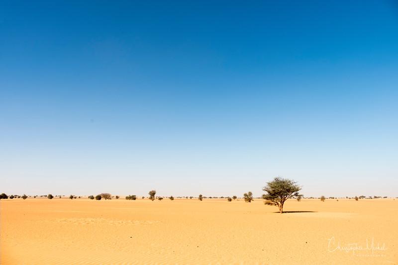 2-2-17228561Meroe-Bayuda Desert-Karima.jpg