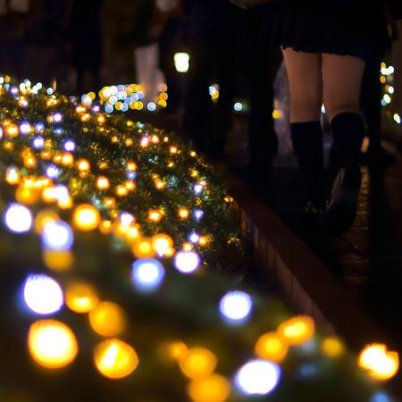 2011 Christmas Illumination