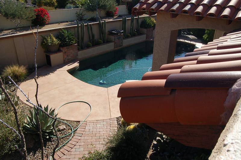 20121221_Scottsdale_Back_Yard_049.JPG