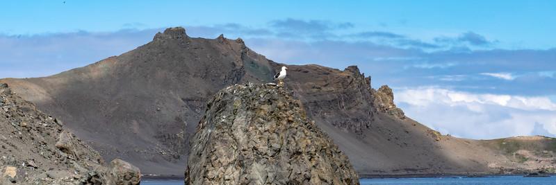 2019_01_Antarktis_01676.jpg
