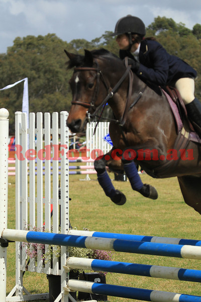2012 10 13 WASJA Patrons Cup 80cm