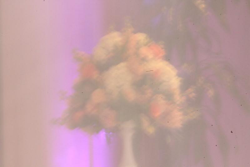Wedgewood Sierra La Verne Bridal Show - 0023.JPG