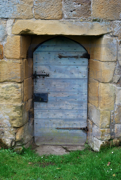 Doors Unpainted