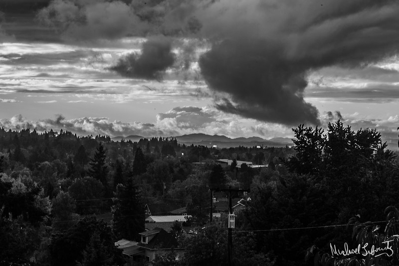 after the rain  #4 bw (1 of 1).jpg