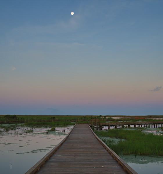 20190619_AnahuacNWR_Shovelers_Pond_Moon_Setting_Over_Boardwalk__750_1839.jpg